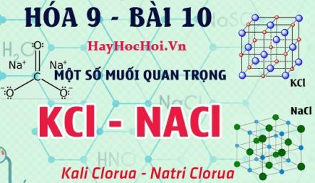 Một số muối quan trọng, tính chất hóa học của Natri Clorua NaCl, Kali Nitrat KNO3 - hóa 9 bài 10